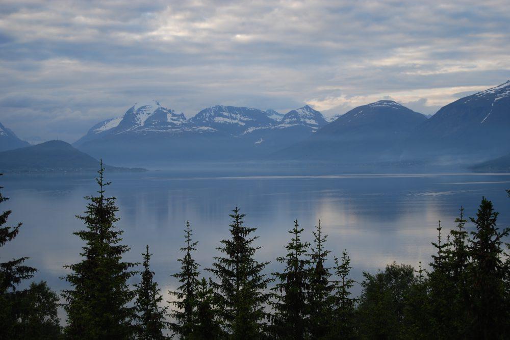 Vom Rallye- in den Cruising-Modus durch die spektakuläre Landschaft Norwegens - CO2mpensio